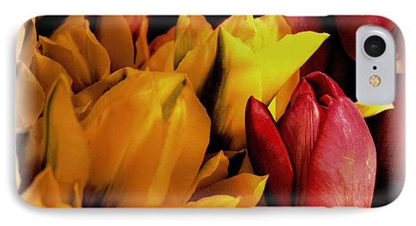 Tulips  Phone Case by David Patterson