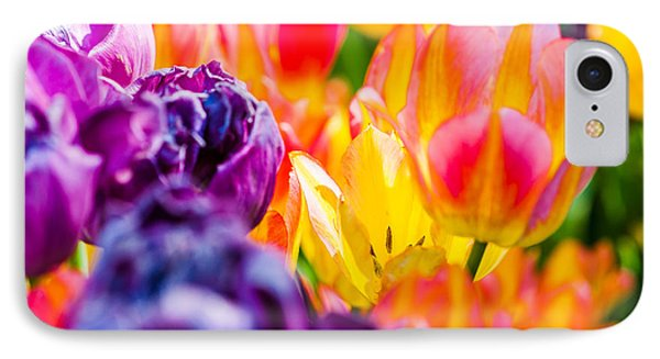 IPhone Case featuring the photograph Tulips Enchanting 39 by Alexander Senin