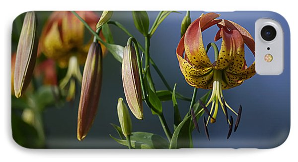 Turk's Cap Lily Phone Case by Randy Bodkins