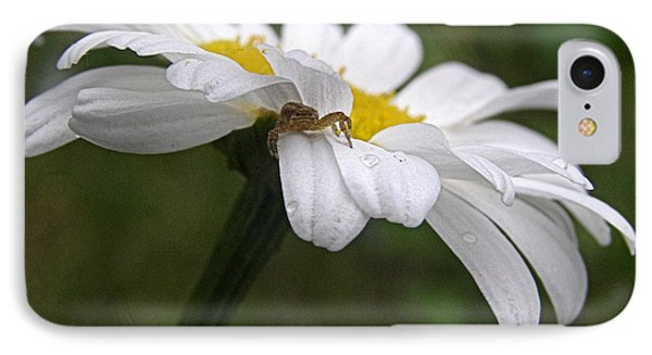 IPhone Case featuring the photograph Umbrella For A Spider by Angie Rea