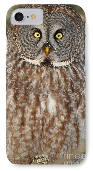 Up Close And Personal IPhone Case by Heather King