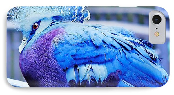 IPhone Case featuring the photograph Victoria Crowned Pigeon by Al Fritz