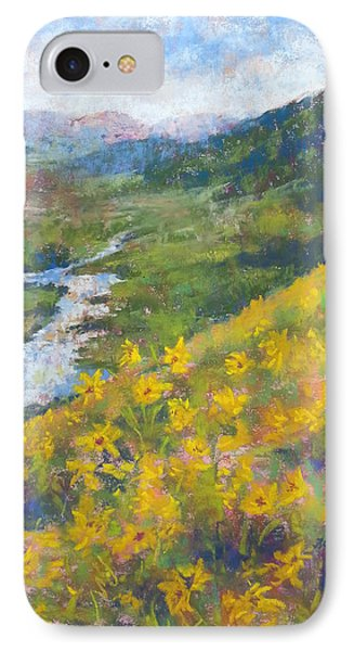View From Baxters Gulch IPhone Case by Becky Chappell
