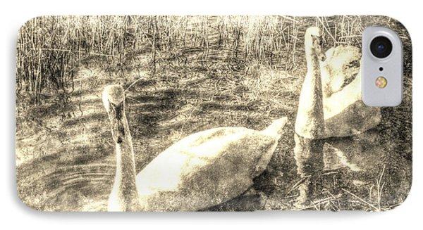 Vintage Swans IPhone Case by David Pyatt