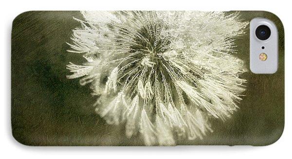 Water Drops On Dandelion Flower IPhone Case