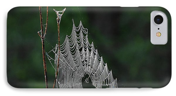 IPhone Case featuring the photograph Webs We Weave by Skip Willits
