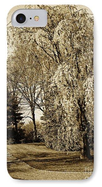 Oriental Weeping Cherry Tree Wall Art IPhone Case by Carol F Austin