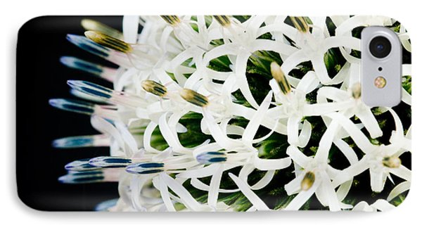 White Alium Onion Flower IPhone Case