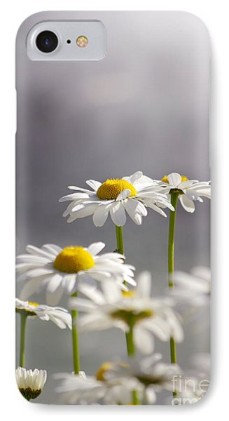 White Daisies Phone Case by Carlos Caetano