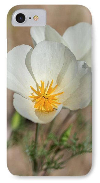 IPhone Case featuring the photograph White Poppies  by Saija Lehtonen