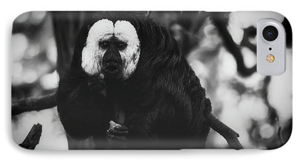 IPhone Case featuring the photograph White Saki by The 3 Cats