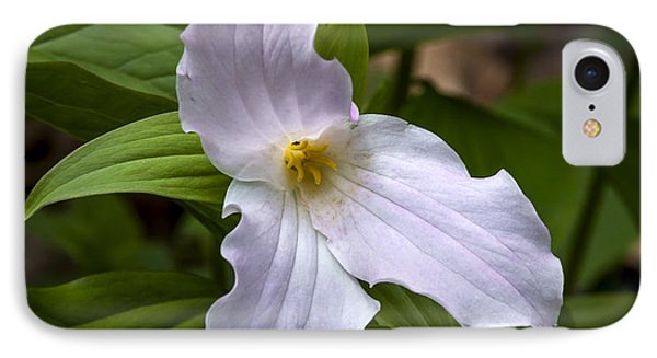 White Trillium IPhone Case by Tyson and Kathy Smith