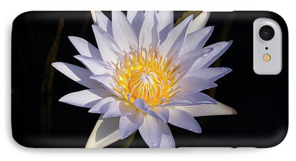 IPhone Case featuring the photograph White Water Lily by Steve Stuller