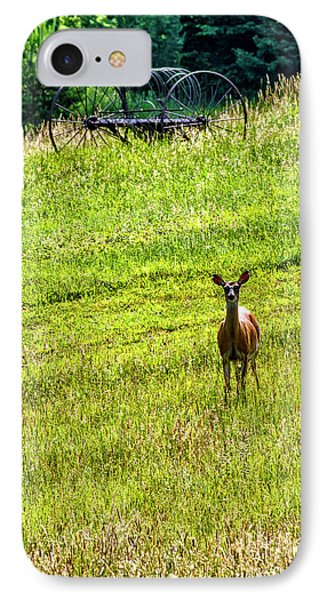 IPhone Case featuring the photograph Whitetail Deer And Hay Rake by Thomas R Fletcher