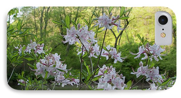 IPhone Case featuring the photograph Wild Azaleas 2 by Chris Scroggins