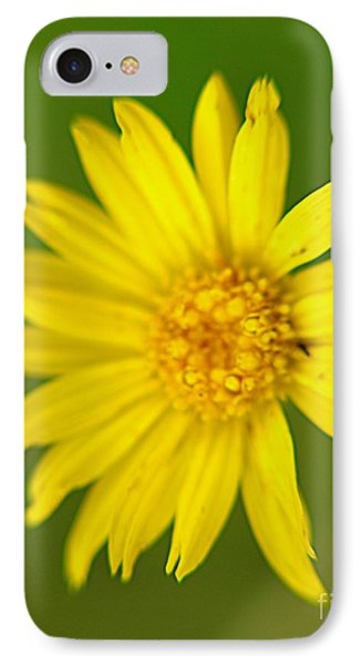 IPhone Case featuring the photograph Wild Flowers by Janice Spivey