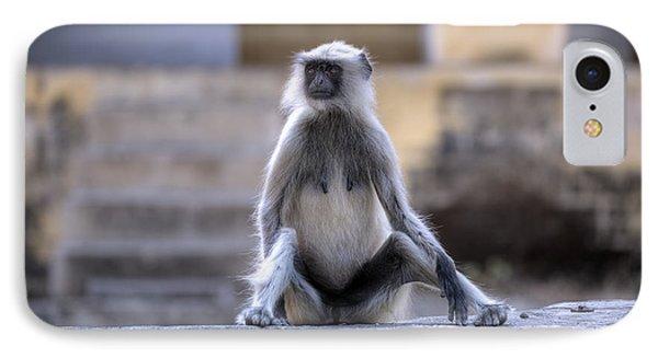 wild monkey in Rajasthan - India IPhone Case by Joana Kruse