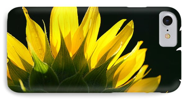 IPhone Case featuring the photograph Wild Sunflower by Shari Jardina