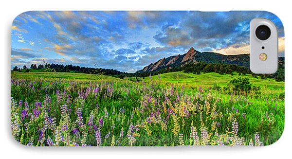 Wildflower Wonder IPhone Case by Scott Mahon