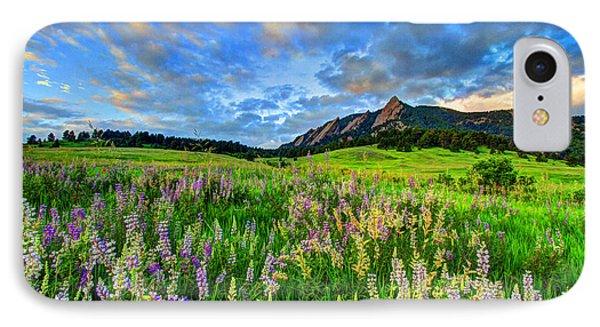 Wildflower Wonder IPhone Case by Scott Mahon