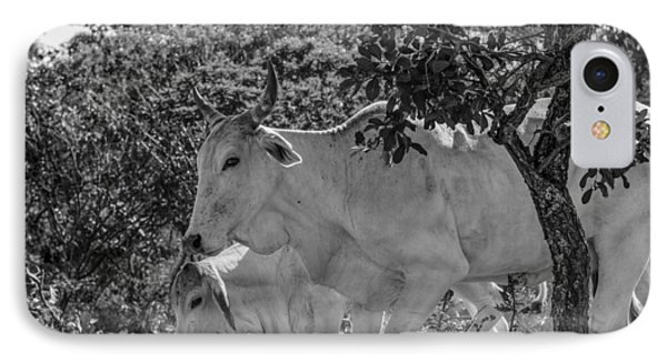 Wildlife IPhone Case by Daniel Precht