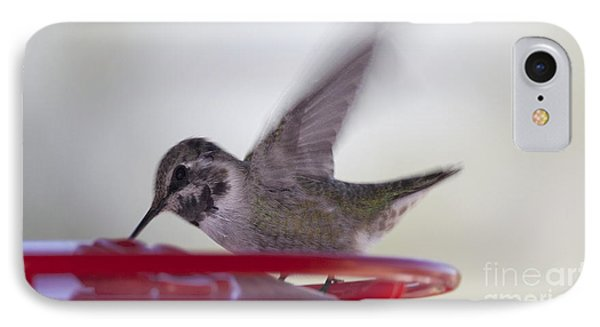 IPhone Case featuring the photograph Wings In Motion 2 by Anne Rodkin
