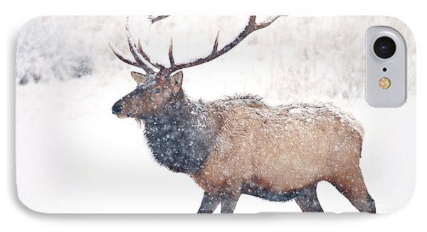 IPhone Case featuring the photograph Winter Bull by Mike Dawson