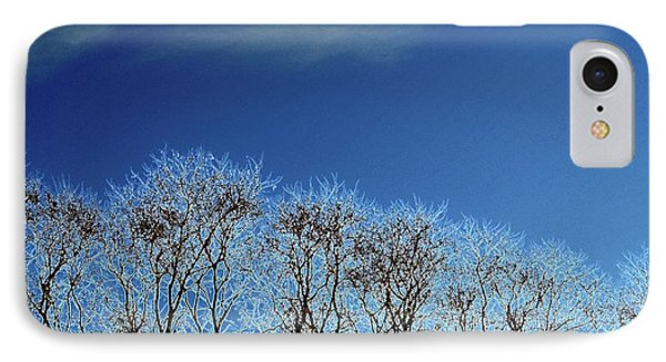 Winter Trees And Sky 3  IPhone Case