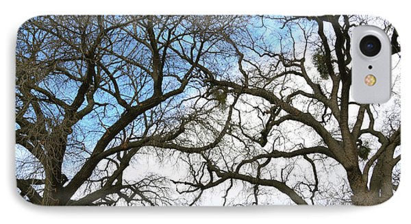 IPhone Case featuring the photograph Winter Trees At Fort Tejon Lebec California  by Floyd Snyder