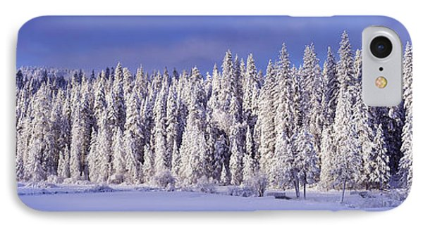 Winter Wawona Meadow Yosemite National IPhone Case by Panoramic Images