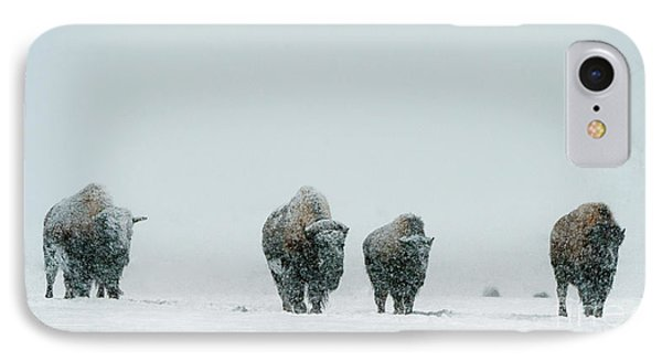IPhone Case featuring the photograph Winter's Burden II by Sandra Bronstein