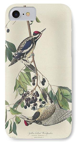Yellow-bellied Woodpecker IPhone Case by John James Audubon