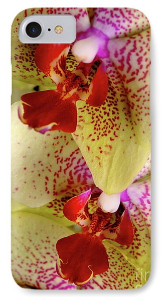 IPhone Case featuring the photograph Yellow Orchid by Dariusz Gudowicz