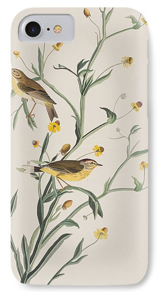 Yellow Red-poll Warbler IPhone Case by John James Audubon