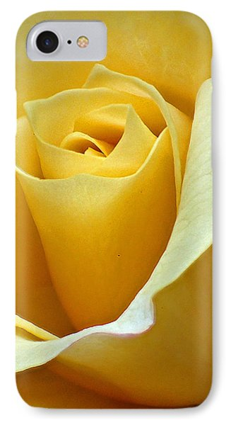Yellow Rose IPhone Case by Farol Tomson