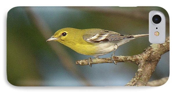 Yellow-throated Vireo IPhone Case
