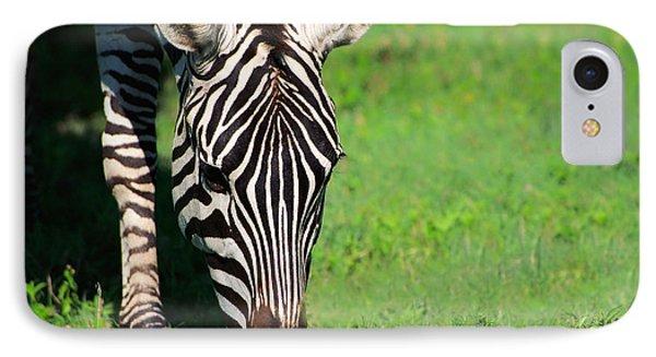 Zebra IPhone Case by Sebastian Musial
