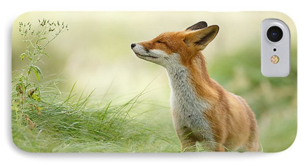 Zen Fox Series - Zen Fox IPhone Case by Roeselien Raimond