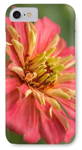 Zinnia IPhone Case by Jim Hughes