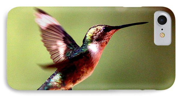 103456 - Ruby-throated Hummingbird IPhone Case