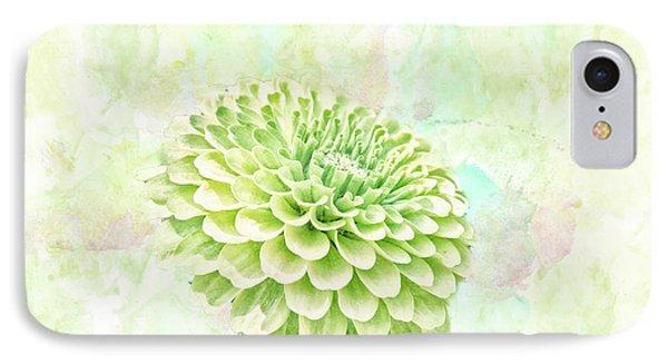 10891 Green Chrysanthemum IPhone Case by Pamela Williams