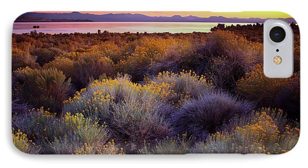 Mono Lake California IPhone Case by Adonis Villanueva