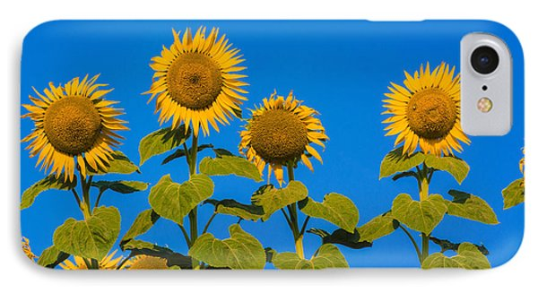 Sunflower iPhone 7 Case - Field Of Sunflowers by Bernard Jaubert