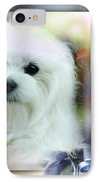Hermes The Maltese IPhone Case by Morag Bates