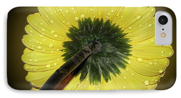 IPhone Case featuring the photograph Yellow Gerber by Elvira Ladocki