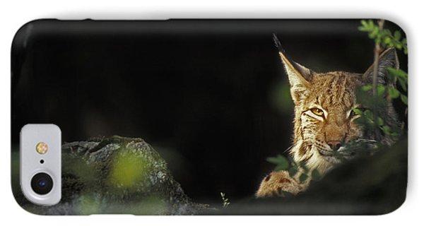 151001p105 IPhone Case