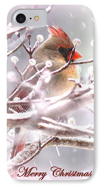 1554-003 Cardinal IPhone Case