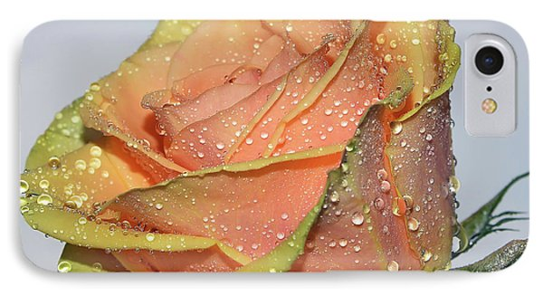 IPhone Case featuring the photograph Rose by Elvira Ladocki