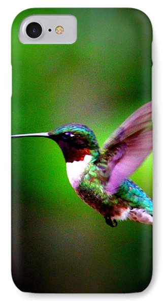 1846-007 - Ruby-throated Hummingbird IPhone Case