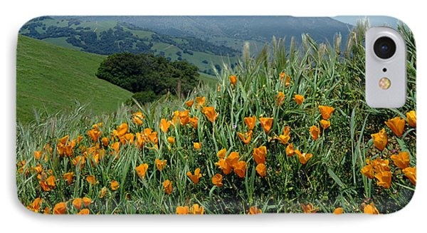 1a6493 Mt. Diablo And Poppies IPhone Case